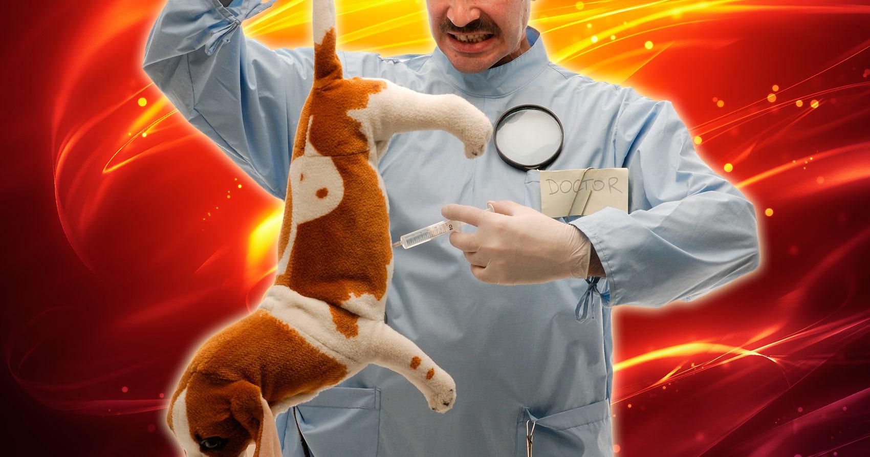 Vacunación Irresponsable en mascotas
